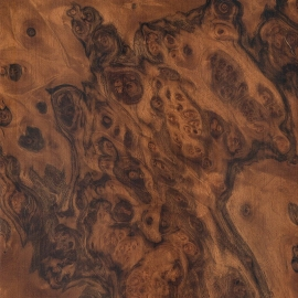 Walnut-Burl