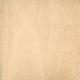 American-Maple
