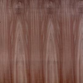 Red-Cedar